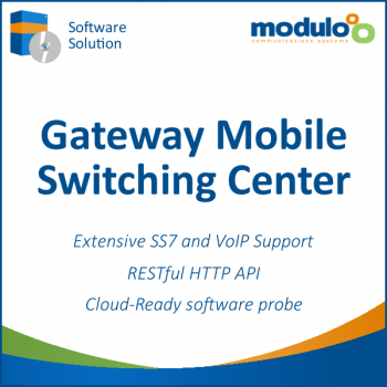 Gateway Mobile Switching Center (GMSC)