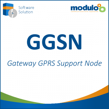 Gateway GPRS Support Node (GGSN)