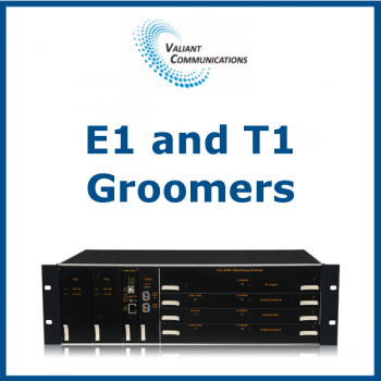 E1 and T1 Groomers