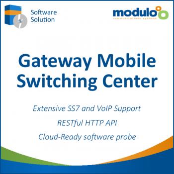 GSM-GPRS Network Interfaces | Modulo C S